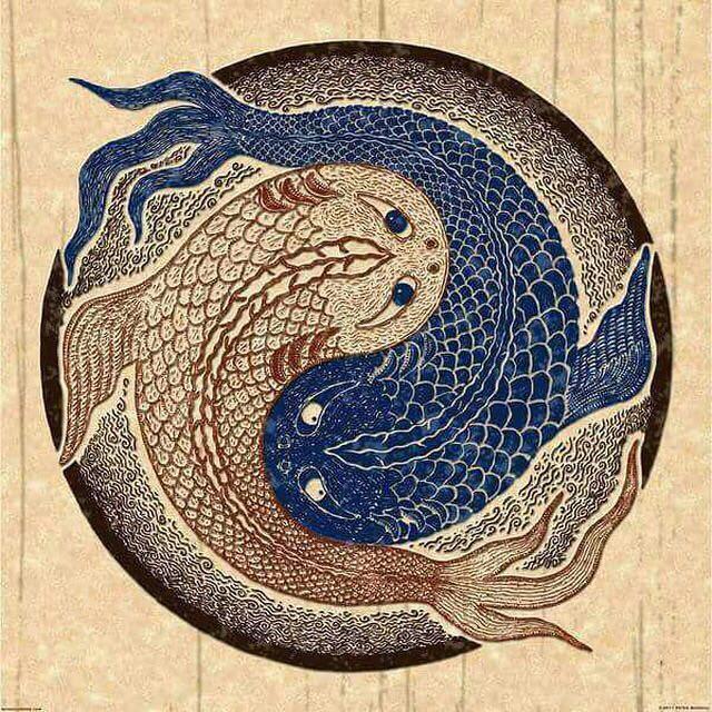 نماد یین و یانگ